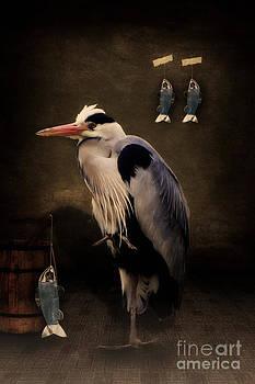 Angela Doelling AD DESIGN Photo and PhotoArt - Heron