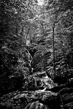 Hidden Falls by Swift Family