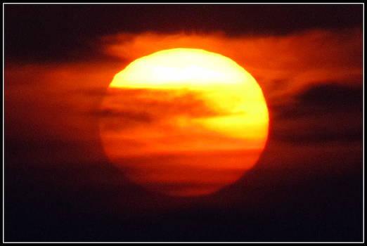 Hiding the Sun by Andrea Linquanti