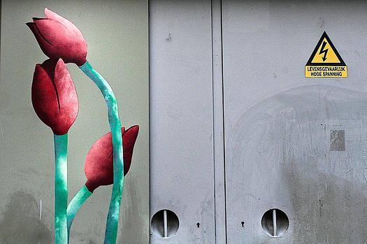 High Voltage Tulips by Ferry Ten Brink