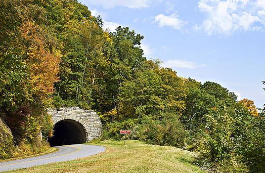 Hillside Tunnel by Susan Leggett