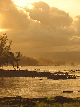 Hilo Shorelines by Ron Holiday Broomell