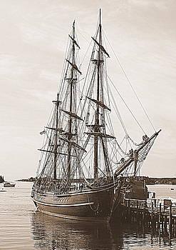 HMS Bounty by Doug Mills