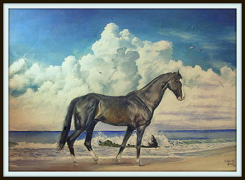 Horse on a Beach by Arion Khedhiry
