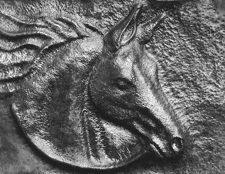 Horse Portrait by Karen Lipeika