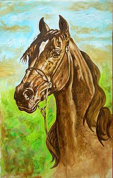 Horse by Tomy Joseph