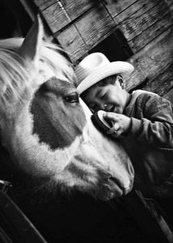 Horse Whisperer by Roxanne Weber