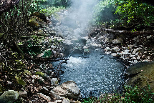 Hot Springs by William Shevchuk