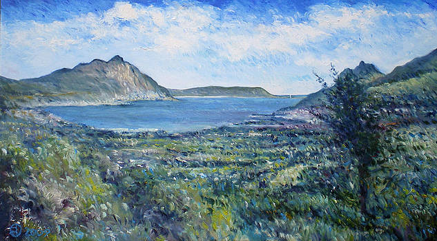 Hout Bay Cape Town South Africa 2006 by Enver Larney