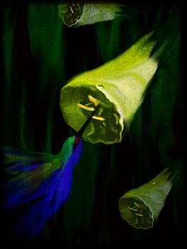 Hummingbird by Betsey Walker Culliton