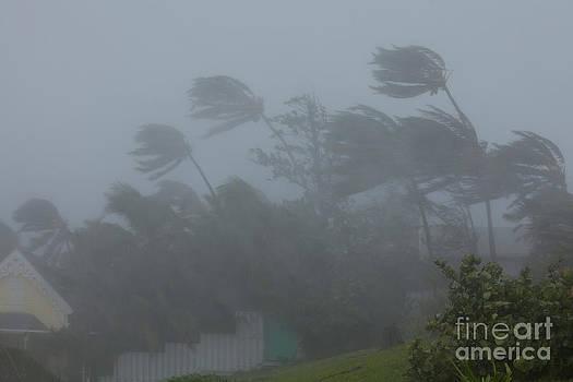 Jim Edds and Photo Researchers - Hurricane Irene