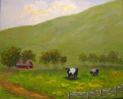 Hwy 46 Cows by Candace Doub
