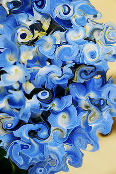 Hydrangea in Abstraction by JoAnn Lense
