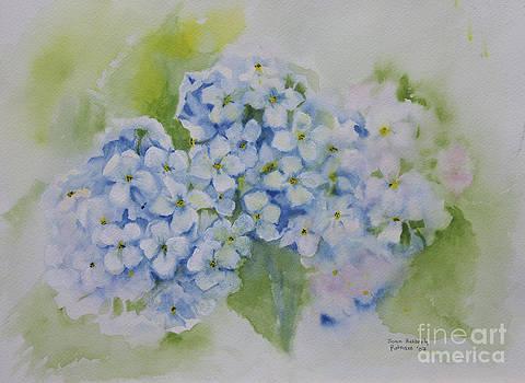 Hydrangia by Joan Putnam