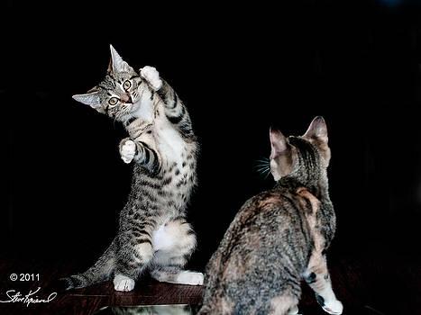 Steve Knievel - I Can Dance