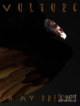 Wingsdomain Art and Photography - I Saw The Vulture in My Dreams Again . with text