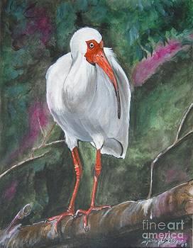 Ibis I by Sharon Wilkens