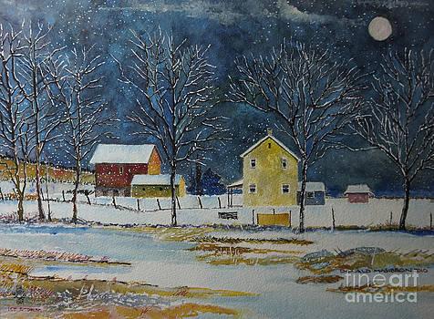 Ice Storm Winter Wonderland by Donald McGibbon
