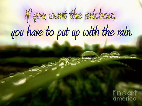 If You Want The Rainbow by Shana Blake