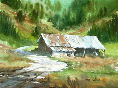 In the Foothills by Tina Bohlman