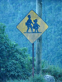 In the hills of Saint Ann Parish by K Walker