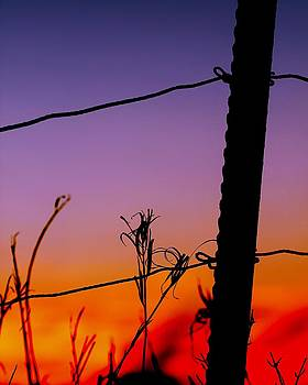 In Thirds Sunset by Timothy Thurman