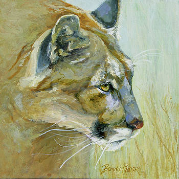 Intense Cougar by Bonnie Rinier