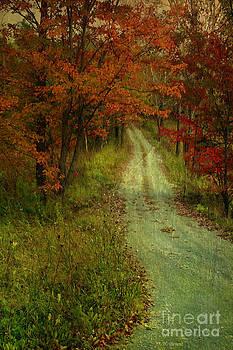 Deborah Benoit - Into The Woods Of Fall