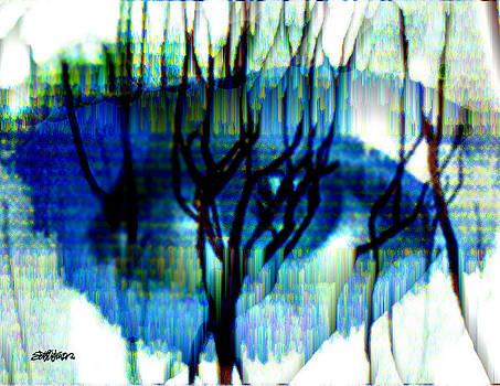 Iris by Seth Weaver