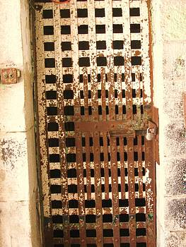 Iron Cell Door by Trish Pitts