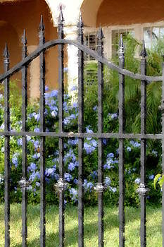 Diane Merkle - Iron Gate and Blue Flowers