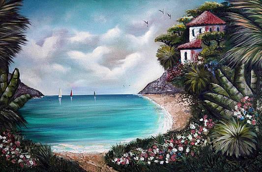 Island Cove by Ann Iuen