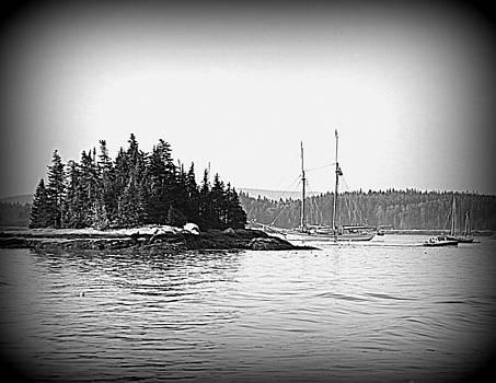 Island Heritage by Doug Mills