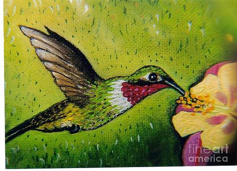 Jack's Hummingbird by William Ohanlan