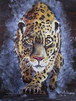 Jaguar by Don Hutchison