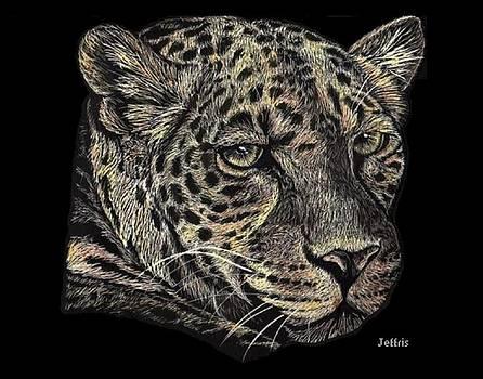 Jaguar by Jennifer Jeffris