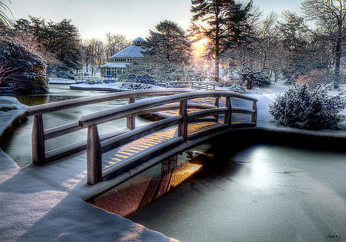 Japanese Bridge by Stephen EIS