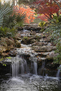 Waterfall in the Japanese Gardens, Ft. Worth, Texas by Greg Kopriva
