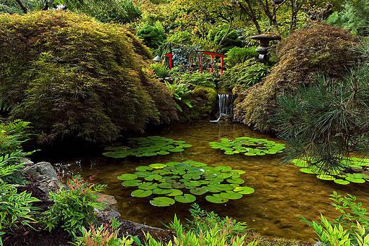 Matt Dobson - Japanese Pond - Butchart Gardens