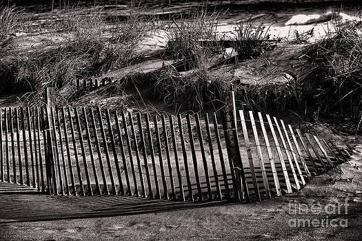 Chuck Kuhn - Jersey Shores II