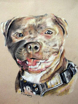 Jordons dog by Tanya Patey