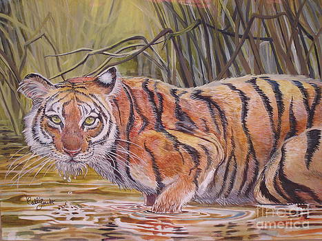 Jungle Sripes by Callie Smith