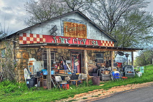 Junk City USA by Terry Hollensworth-Rutledge