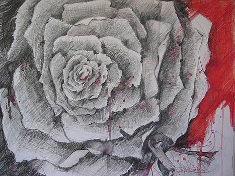 Just A Rose by Brigitte Hintner
