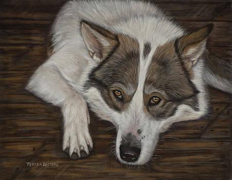Kachina by Teresa LeClerc