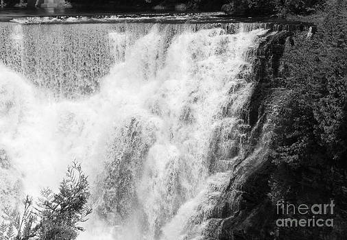 Sue Wild Rose - Kakabeka Falls in B and W