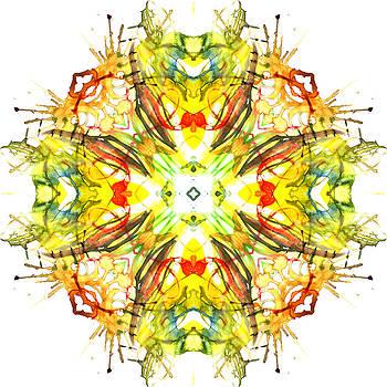 Kaleidoscope 002 by Dina Ignatenko