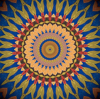 Kaleidoscope Sunflower by Heather  Hubb