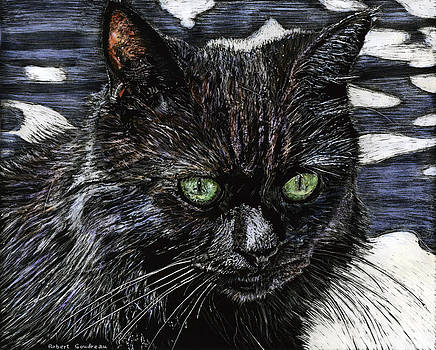 Katie the Cat by Robert Goudreau