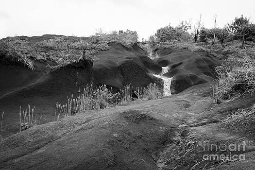 Darcy Michaelchuk - Kauai Rolling Landscape
